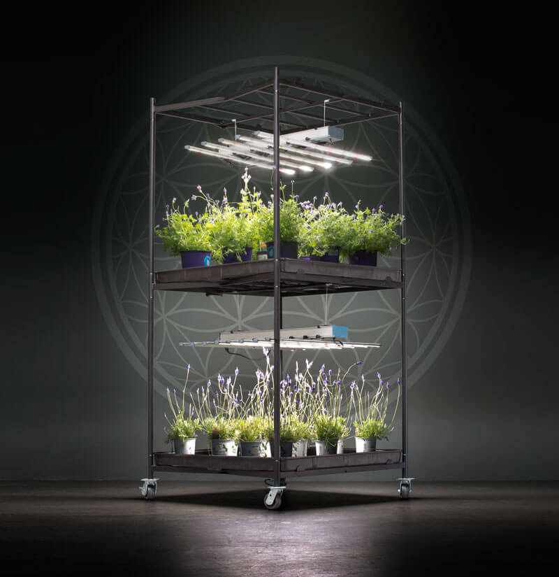 Radicle Systems 4 x 4 Double Level Growing Table