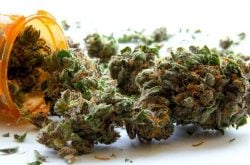 Maine Lawmakers Overturn Governor's Veto on Medical Marijuana Expansion