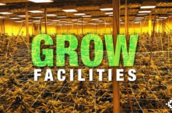 So You Want To Build A Grow Facility…