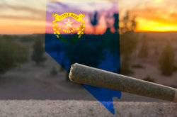 Nevada's 1st Year of Legal Marijuana Beats Revenue Forecasts, Sees Very Few Enforcement Issues
