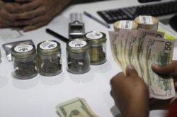 Cannabis Group Predicts $1B In Nevada Tax Revenue Over 7 Years