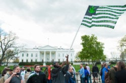 Could There Soon Be Legal Recreational Weed Sales in Washington, DC?