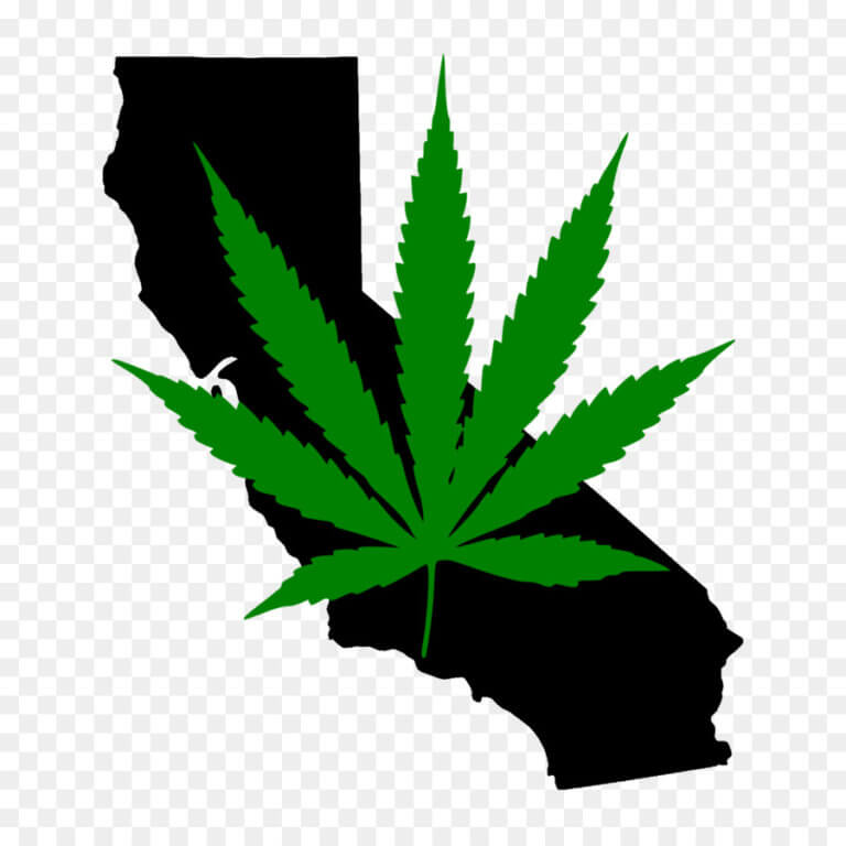 Report: California is Growing Too Much Marijuana… and That's Not Necessarily a Great Thing