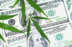 Report: Lawmakers Pushing for Banks to Work with Marijuana, Cannabis Industry