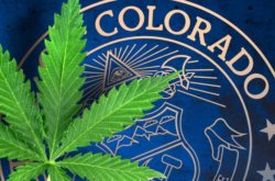 REPORT: Colorado Working On Legislation for Home Delivery of Medical Cannabis