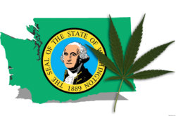 REPORT: Washington Bill Erases Prior Misdemeanor Marijuana Convictions