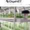 Illinois Cannabis Business Expo Presents- DigaNet, Inc.