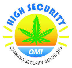 QMI Security Solutions Logo
