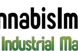 Michigan Marijuana Medical News Report – Cannabis Industrial Marketplace – October 2019