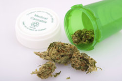 Connecticut Board Of Physicians Recommend Medical Cannabis For Chronic Pain